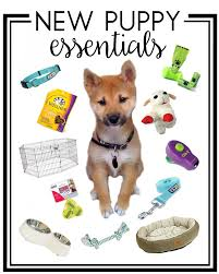 Puppy Essentials